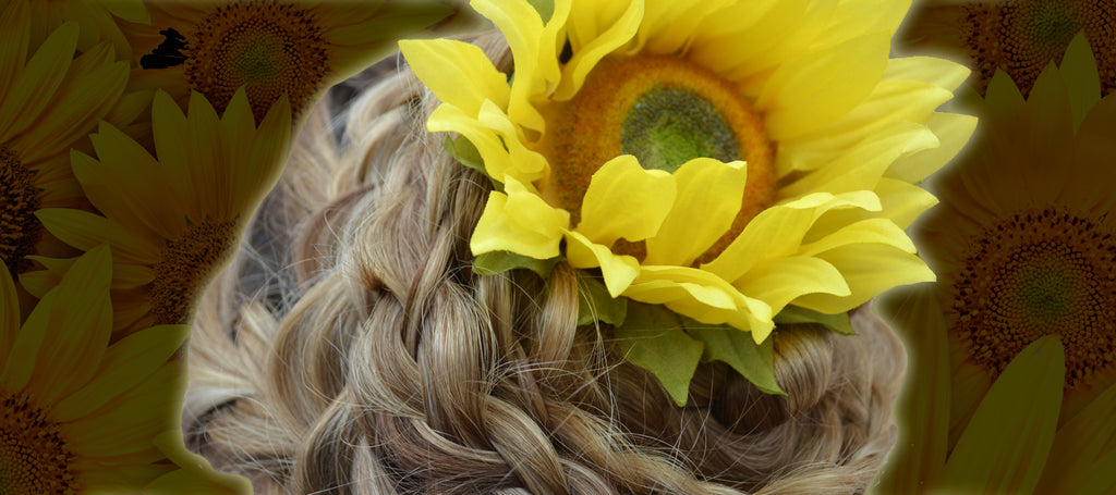 Sunflower Power: The Benefits of Sunflower Seed Extract
