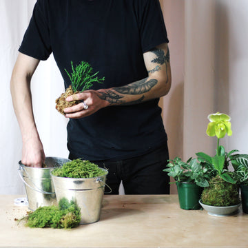 kokedama workshop portland