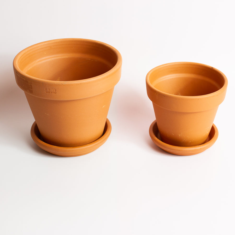 Terra-cotta Planter *Local Delivery/Pickup Only*