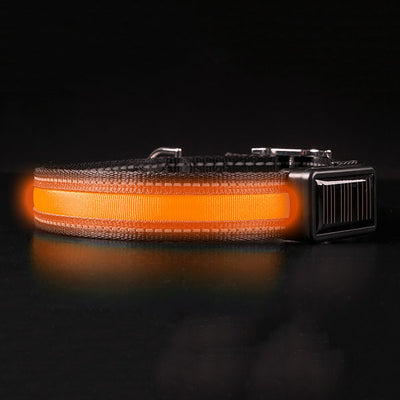 Brite-Strike Technologies Lighted Dog Collar, Solar & Usb Rechargeable, Orange