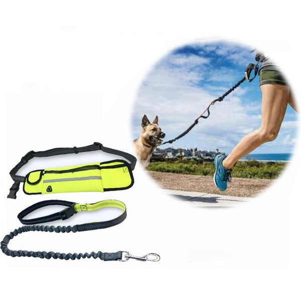 HANDS-FREE PERFECT LEASH