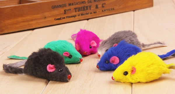 THE LONG-TAIL MICE