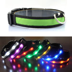 ANTI-LOST LED COLLAR