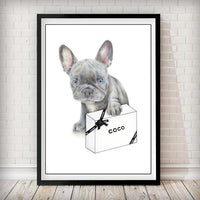 Blue French Bulldog Puppy and Designer box Fashion Art Print - Rock Salt Prints Ltd