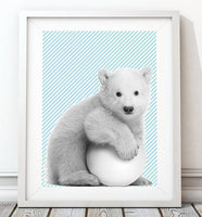 Baby Polar Bear 002 Nursery Art Print - Rock Salt Prints Ltd