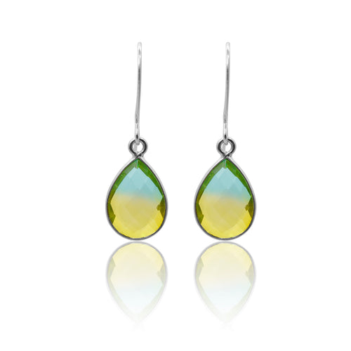 Tropical Aura Drop Earrings - Short