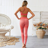 Ladies 2 piece seamless fitness yoga set