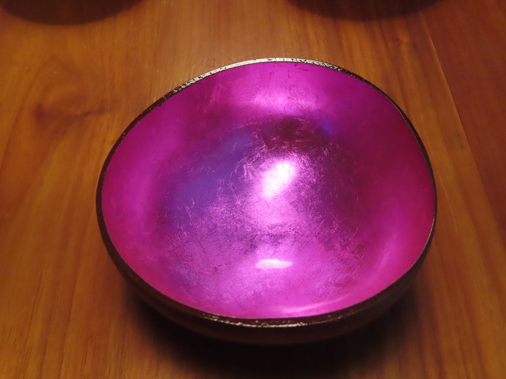Coconut Shell Bowl-Pink