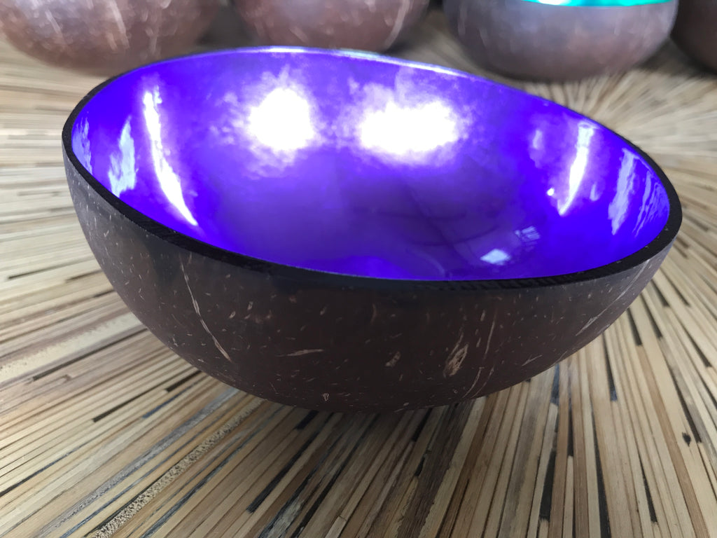 Coconut Shell Bowl-Violet