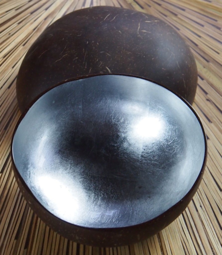 Coconut Shell Bowl-Silver