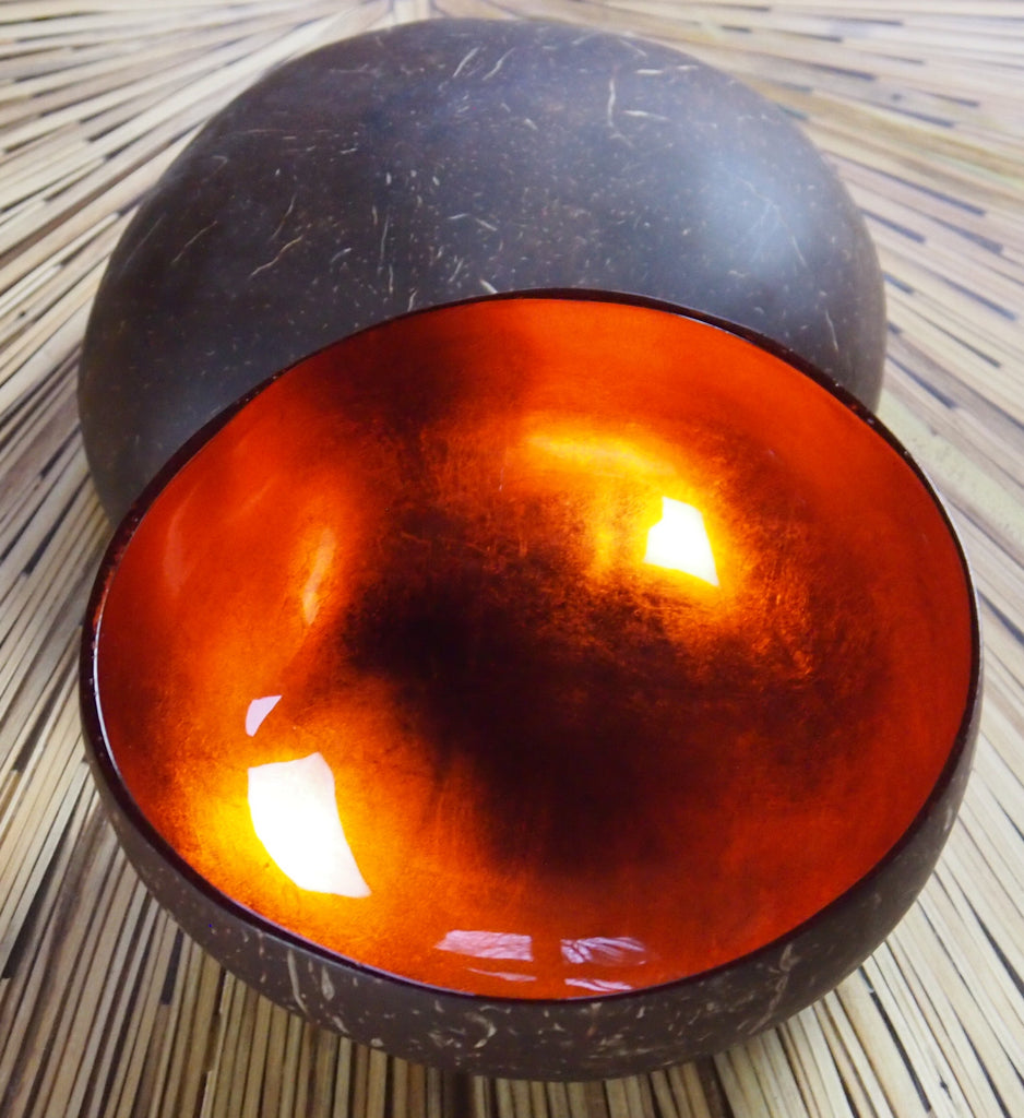 Coconut Shell Bowl-Orange