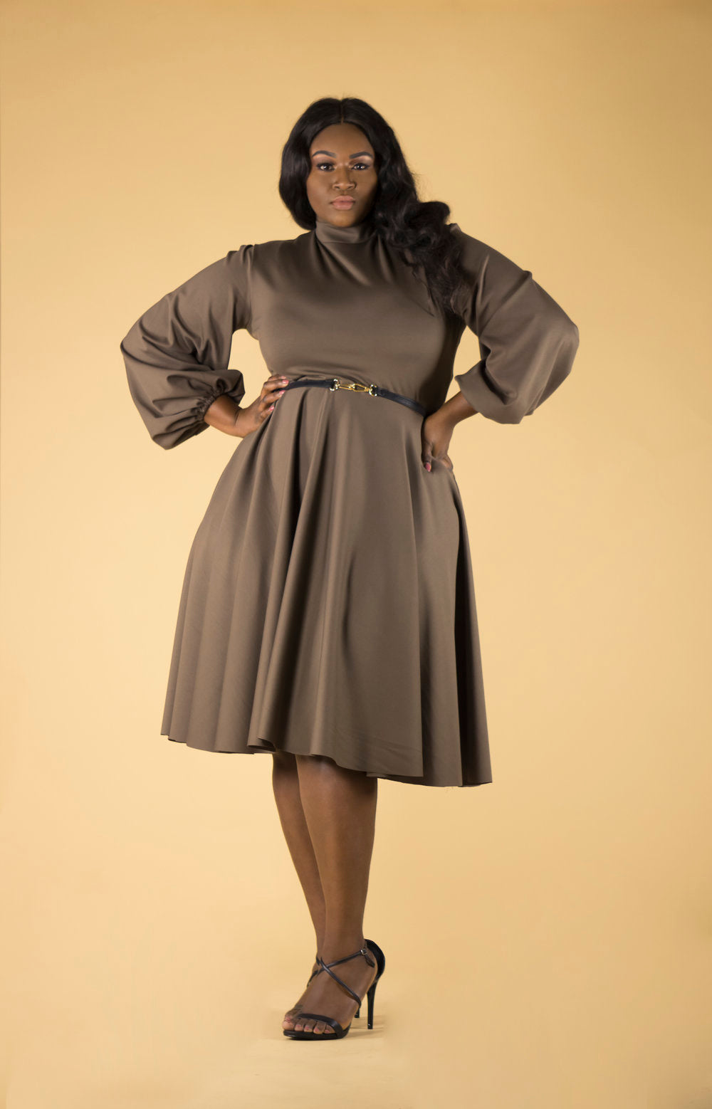 CO Puff Sleeve Circle Dress