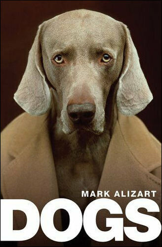Dogs <p>A Philosophical Guide to Our Best Friends<p>by Mark Alizart<p>