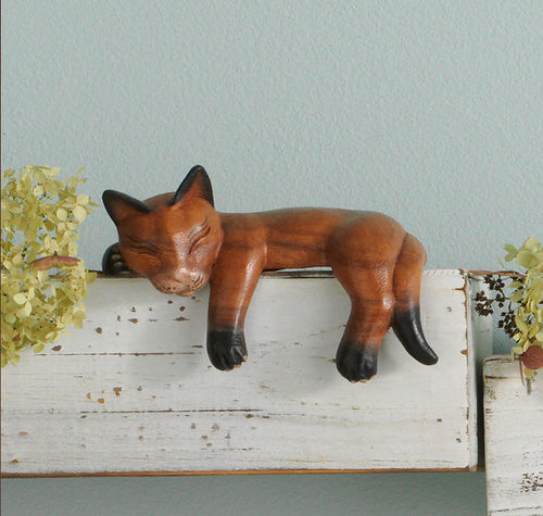 Napping Shelf Cat