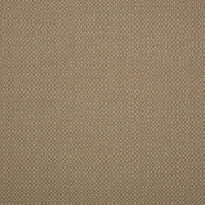 Sunbrella Elements ACTION-TAUPE_44285-0003