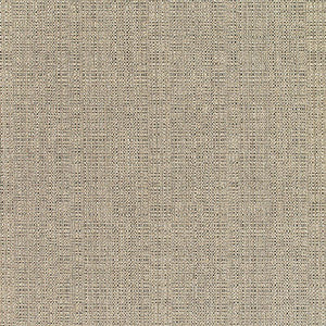 Sunbrella Elements LINEN-STONE_8319-0000