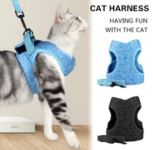 Cat Harness & Leash Set