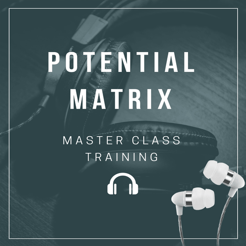 Potential Matrix Masterclass (MP3)