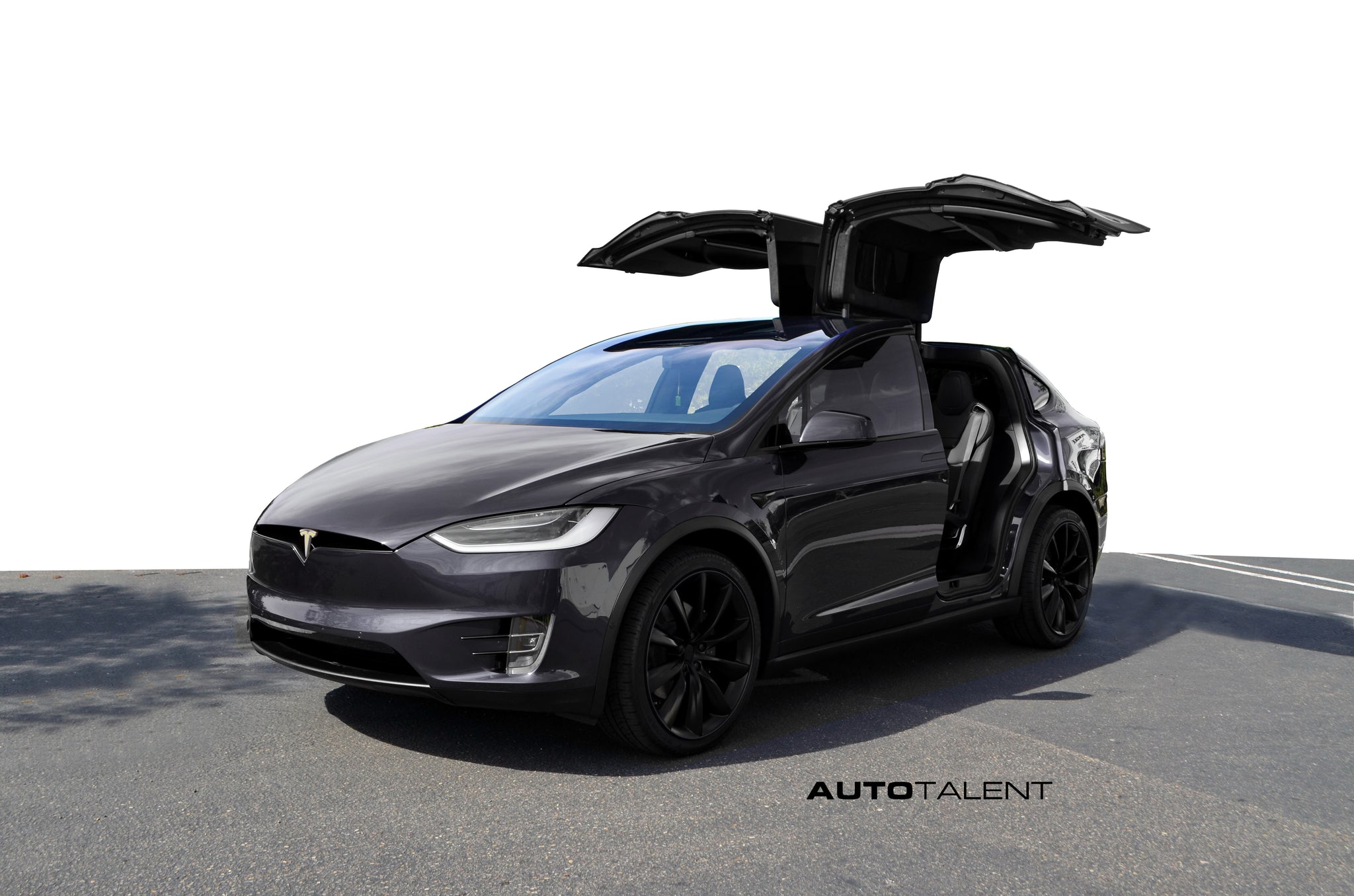 PPF for Model X Tesla