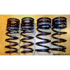 Swift Springs Sport Spec-R Springs Ford Focus ST - AutoTalent