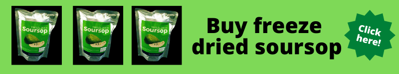 Buy Freeze dried soursop in Canada