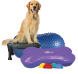FitPAWS CanineGym In a Box