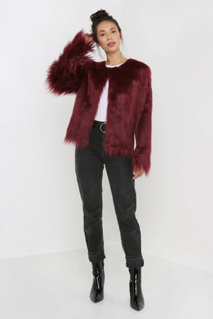 Unreal Dream Jacket in Burgundy