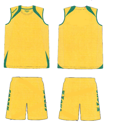 Mens Playing Kit Fly - Gold, with Green Trim