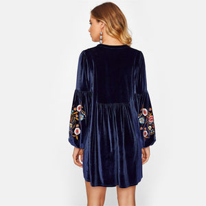 Vodianova Tasseled Tie Velvet Embroidered Dress