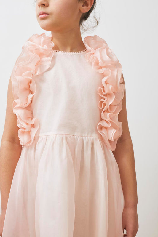 Organza Ruffle Dress