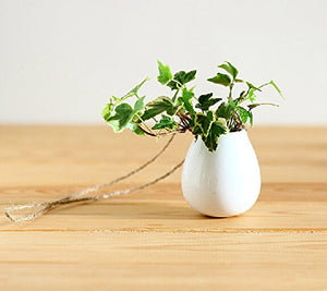 Ceramic Hanging Planter (Pack of 2)