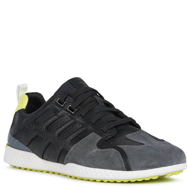 Geox Snake.2 Lace Up Shoes