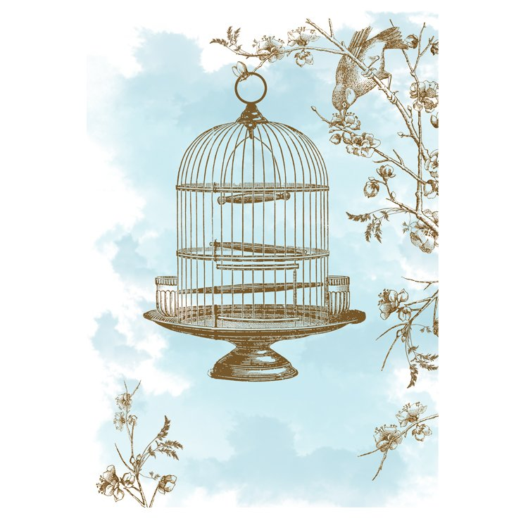 GREETING CARD - BLUE AND BROWN BIRDCAGE