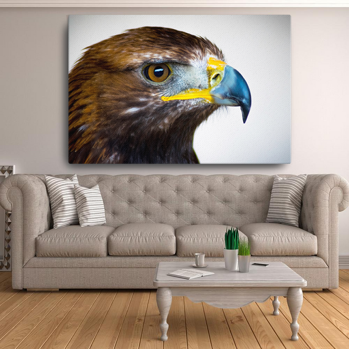 Golden Eagle Canvas - Cotonz Online Shopping