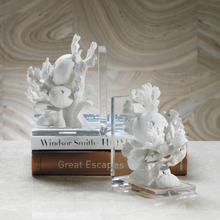 Coral Beach Book Ends