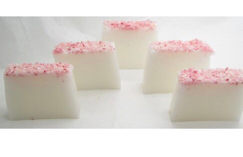 Coconut Fragranced Soap Slice
