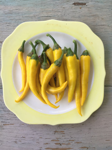 Golden Cayenne Hot Pepper