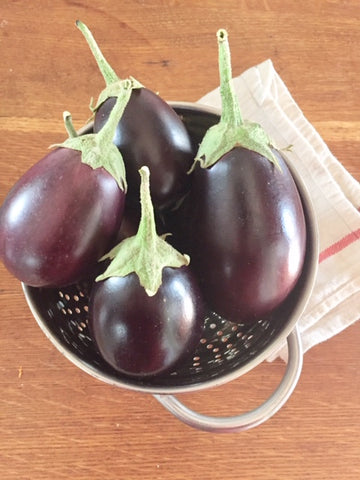 Heart of the North Eggplant