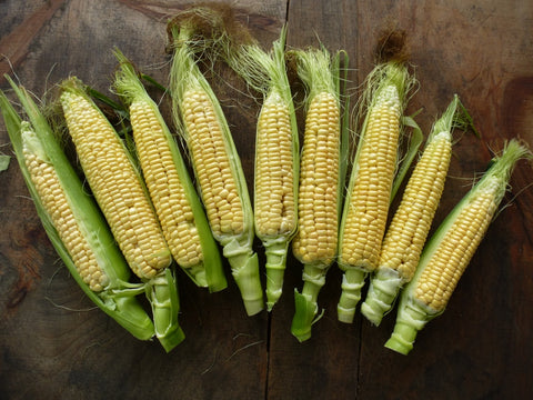 Dorinny Sweet Corn - Heirloom!