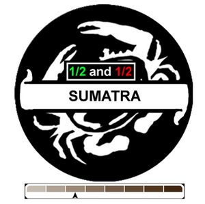 1/2 and 1/2 Sumatra, 1 lb (16 oz)