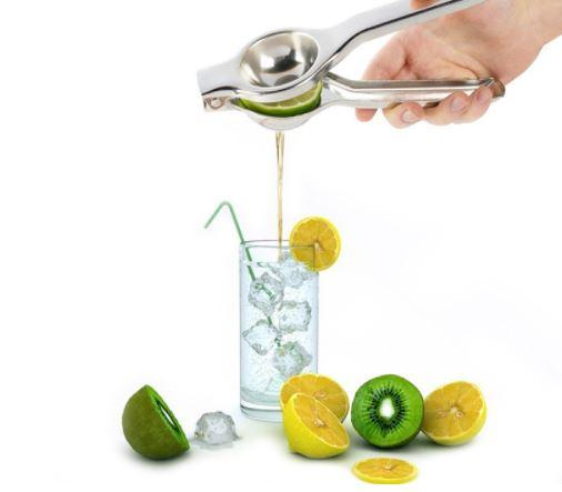 Handy Citrus Press