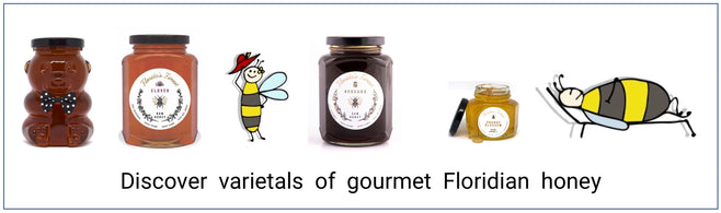 Healthy nutritional supplement floridian raw honey such as tupelo, gallberry, saw palmetto, orange blossom, wildflower honey./></a></p>