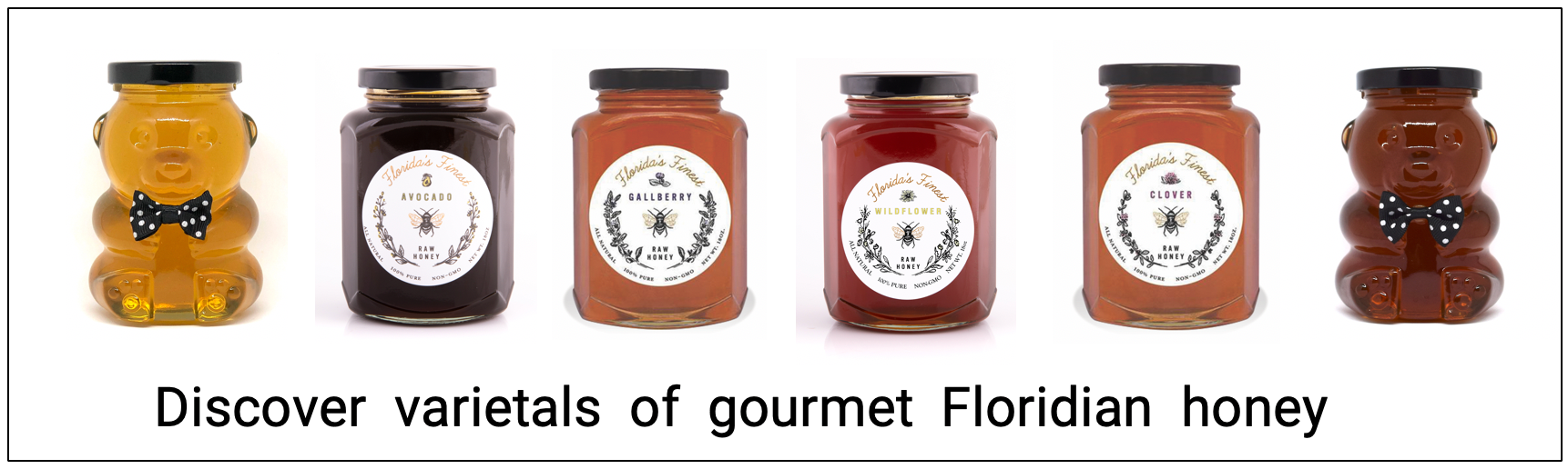 Honey varietals of Florida's Finest Raw Honey: Tupelo, Buckwheat, Clover, Orange Blossom, Saw Palmetto, Rare Avocado and Manuka honey.