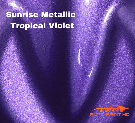 Sunrise Super Coarse Metallic Tropical Violet Basecoat Quart Motorcycle Kit
