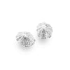 Sterling Silver Limpet Shell Earrings - Seashore Jewellery