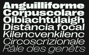 Right Grotesk - Spatial Family