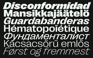 Right Grotesk - Wide Family