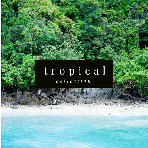 BEACH AND TROPICAL