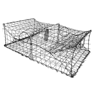Collapsible Crab and Fish Trap