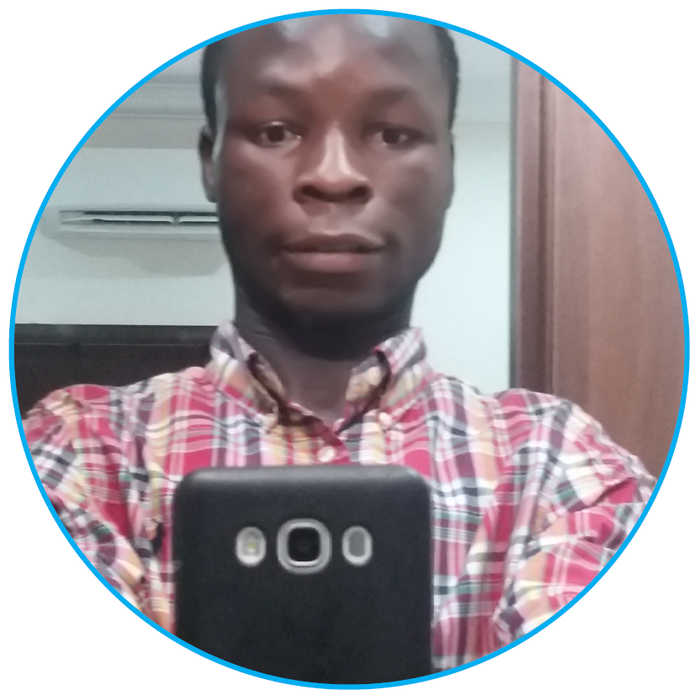 Emmanuel Agbedejobi - Government